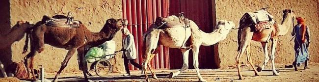 marocco-16-2.jpg